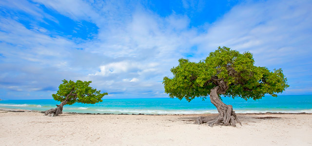 praia-eagle-Aruba-zarpo-magazine