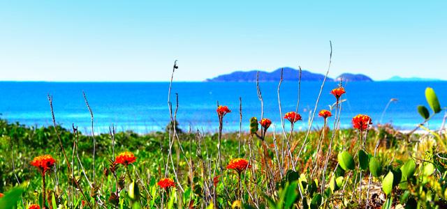 praia-florianopolis-zarpo-magazine