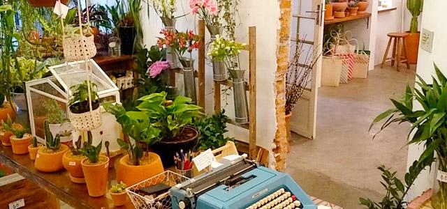 cafe-jardin-zarpo-magazine