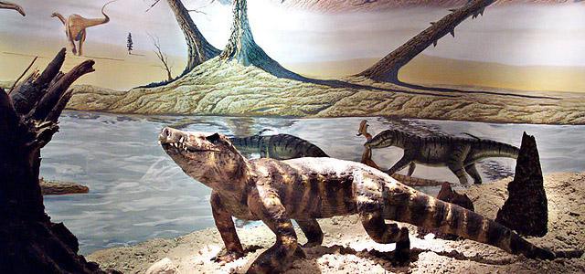 wiki-museu-dos-dinossauros-uberaba-mg-zarpo