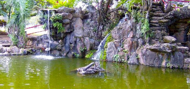 Jardim Japonês - Caldas Novas