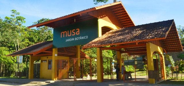 Musa Jardim Botânico - Manaus