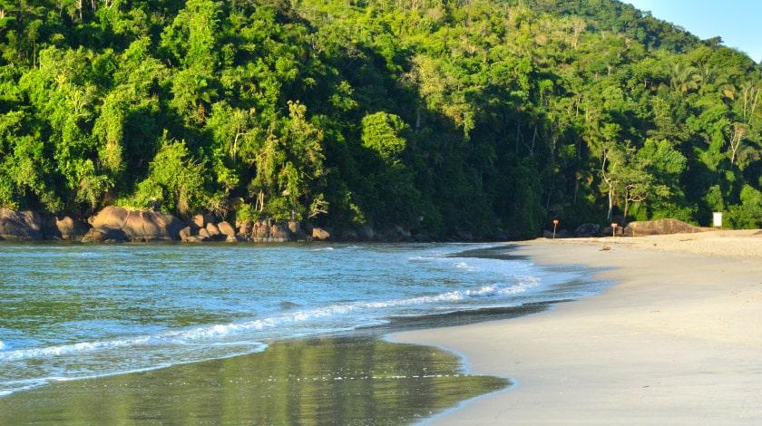 Praia do Itamambuca - Ubatuba