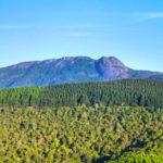 Charme e Tranquilidade nos Melhores Hotéis em Monte Verde