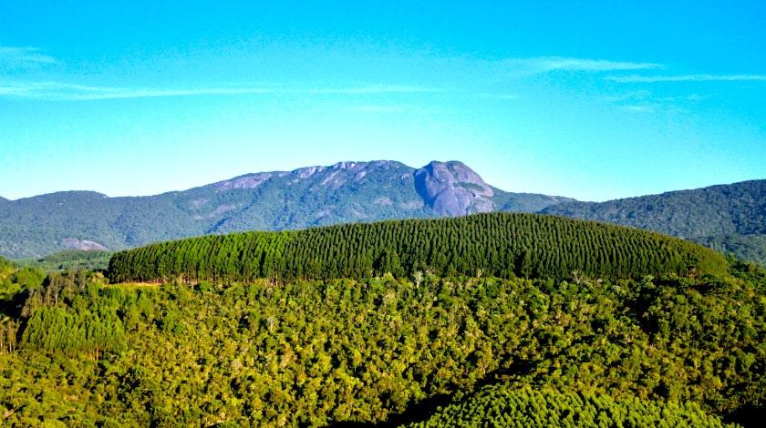 Natureza de Monte Verde, no Sul de Minas Gerais