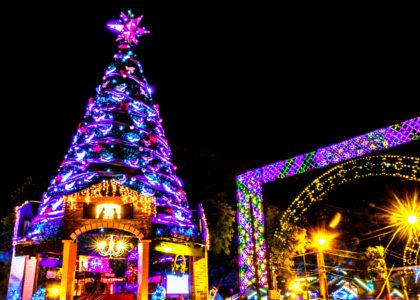 Tudo que você precisa saber sobre o Natal Luz de Gramado
