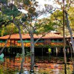 Pantanal Jungle Lodge: uma autêntica aventura na selva