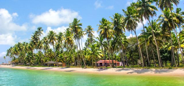 Praia dos Carneiros - Pernambuco