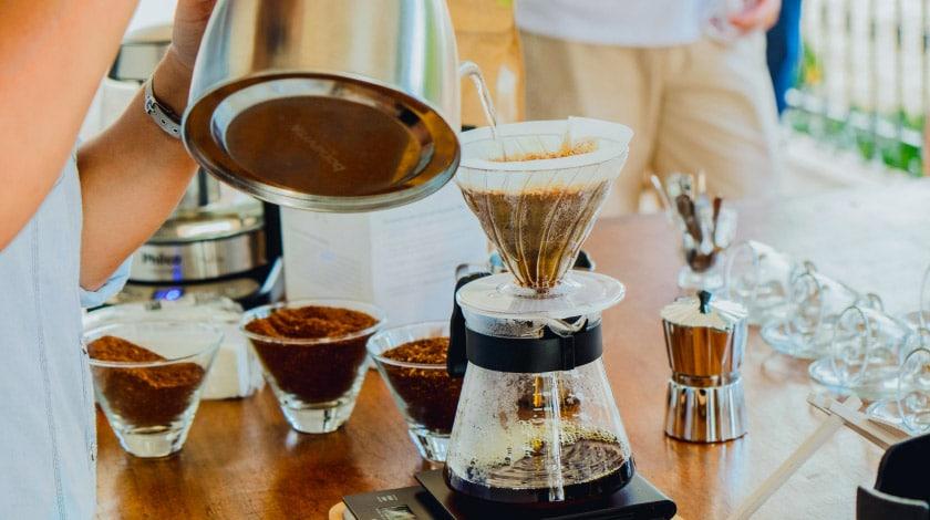 Fazenda Dona Carolina - Produção de Café