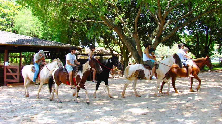 Cavalos do Hotel Estância Barra Bonita