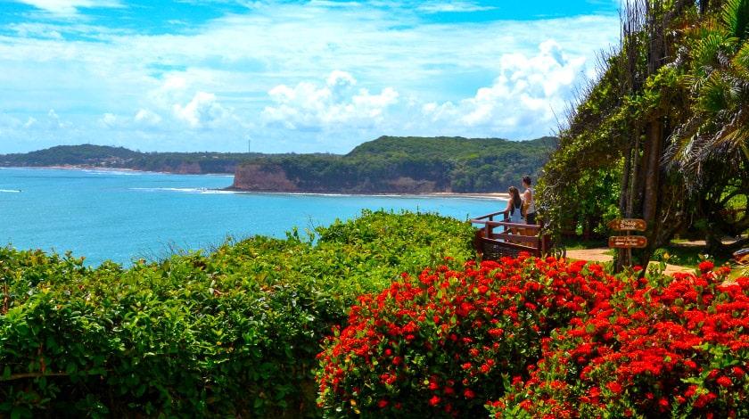 Flores e vegetação ao lado da sacada do Hotel Ponta do Madeiro, com vista para o mar e perfeito para o verão a dois