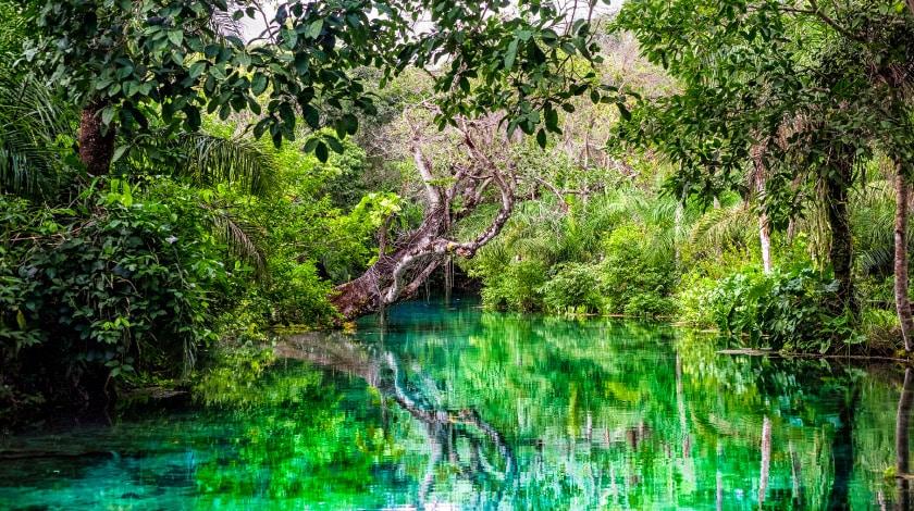 Rio Sucuri, em Bonito, destino ideal para viajar em março