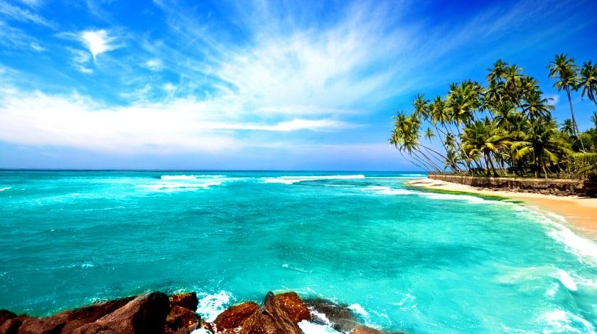 Mar de águas turquesa, praia e coqueiros de Punta Cana