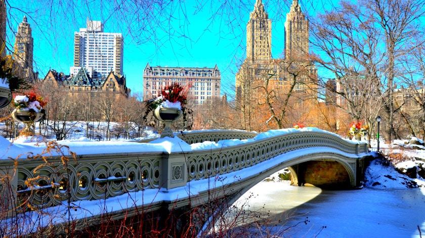 Vista para paisagem de Nova York repleta de neve