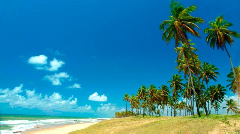 Praia e coqueiros, cenário da Orla da Costa