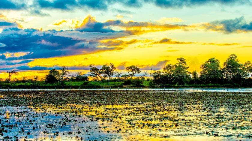 Pôr do Sol no Pantanal, destino perfeito para viajar em março