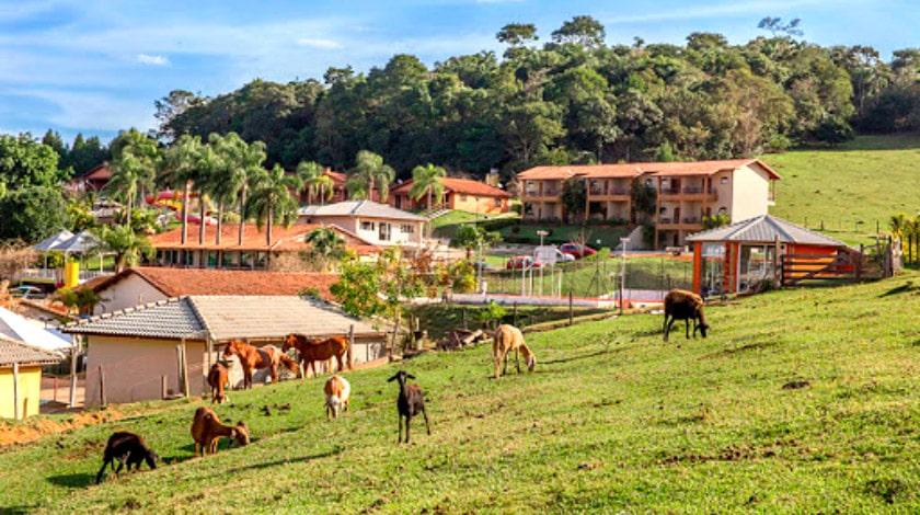 Animais do minizoológico do Hotel Fazenda Paraty