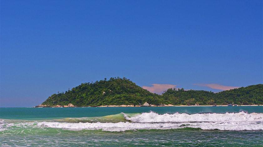 Praia do Campeche, em Santa Catarina