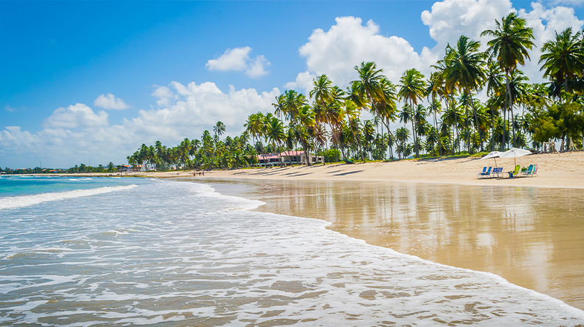 Vista geral da Praia dos Carneiros